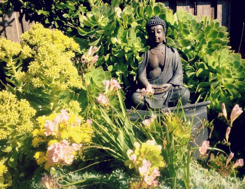 peaceful-buddha-2